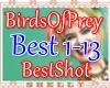 e BOP - Best Shot