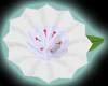 LSS Lapel Flower