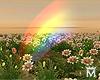 May♥Rainbow Filters