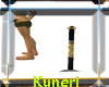 ~K~Single Pole NO Pose