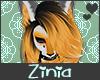 Z| Custom Fox Hair