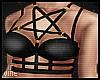 ♔ Harness Gold&Black
