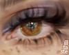 Halo Cocoa. eyes