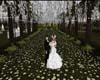 WEDDING FOREST DECO (KL)