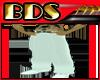 (BDS)-ClassWhitePants