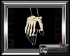 Handheld Real Bones R