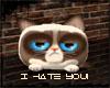 .::Grumpy Cat::.
