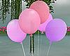 Pink Purple Balloons Ani
