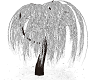 SILVER TREE1