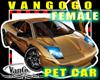 VG Avi CAR Gold Female