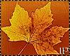 Falling  Leaves Animated
