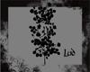 [lud] Black Roses
