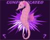 PinkSeahorse