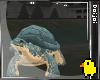 Turtle Avatar ! Cute