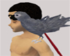 Casco Birds Qr2