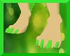 Dandelion Paws (M)