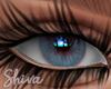 $ Lola Blue Eyes