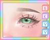 Brown Eyeborws