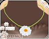 [Pets] Binky | necklace