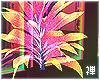 禅 | Pride Glow Plant