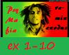 PsyMafia-remix Exodus