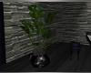Purple Elegance Plant 1