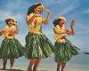 HULA GROUP DANCE