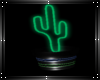 Nothern Light cactus 2