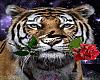 Romantic Tiger Badge