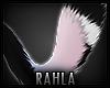 TAZZA Tail 4