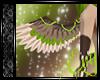 ✞ℰ✞Duma.Wings.