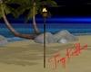 torche/torch paradise