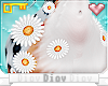 *D* Daisy's Body Daisies
