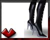 (V) Sleek Leather Boots