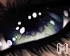 BRODY Green Eyes M/F