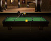 Exquisite Pool Table