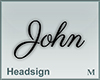 Headsign John