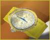  UN -GoldRocks Watch
