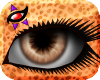 K~ Raeyah Eyes