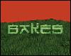 Be GRASS