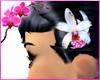 RC Diamond Orchid V1