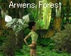 Forest of Arwen