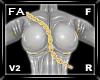 (FA)TorsoChainOL2FRGold2