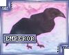 {e.e} (Head) Black Crow
