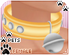 [Pets]Collar v2 | Yellow