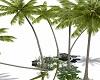 Sum Beach Add Palms
