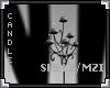 [LyL]Shelz Candles