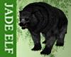 [JE] Black Bear