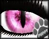 [Pup] Pink Cat Eyes
