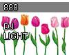888 Spring flower DJ
